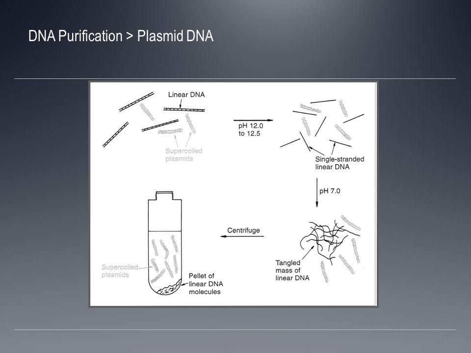 Separación basado en conformación DNA ¨superenrrollado¨ también puede ser separado del DNA regular utilizando bromuro de etidio en asociación con un gradiente de densidad con cloruro de cesio (CsCl)