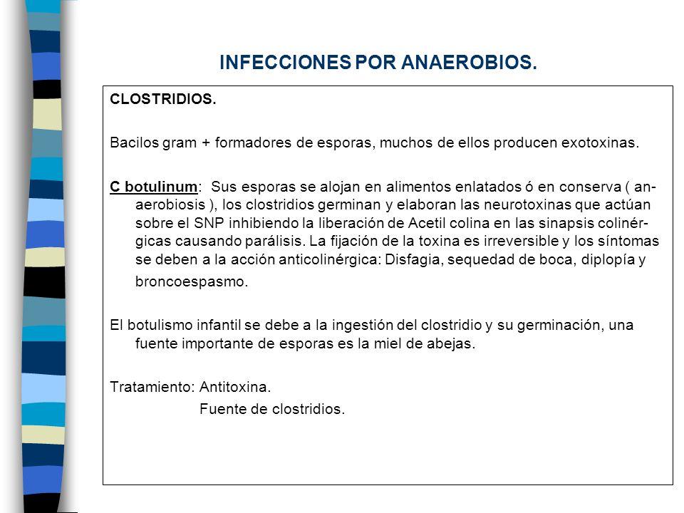 Clostridio