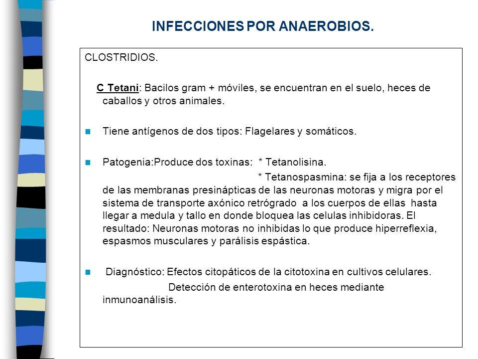 INFECCIONES POR ANAEROBIOS.CLOSTRIDIOS.