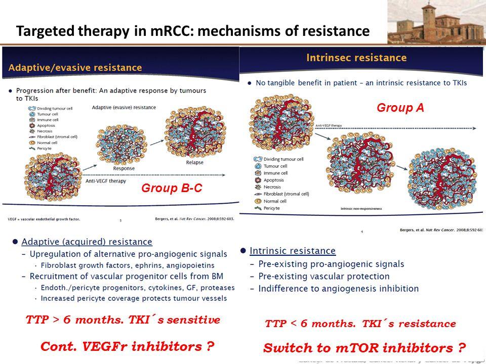 Inhibiting VEGF Receptors 1, 2, 3 Axitinib H N N S CONHMe N Small molecule indazole derivative Orally administered: 5 mg BID BID = twice daily Hu-Lowe DD, et al.