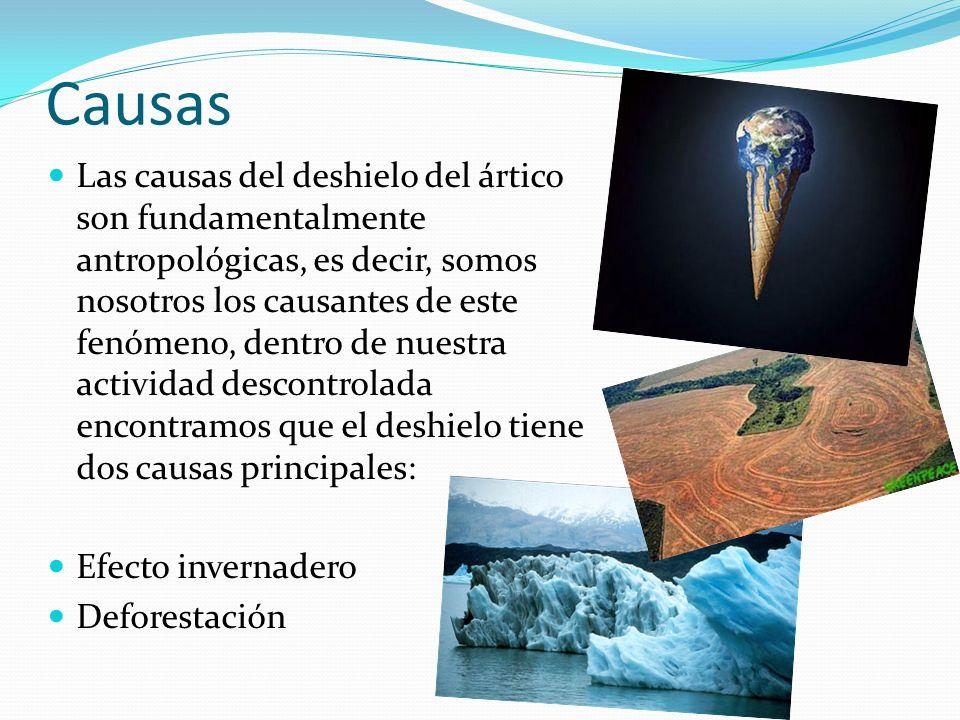 El efecto invernadero Se denomina efecto invernadero al fenómeno por el cual determinados gases de la atmósfera retienen la radiación solar emitida por el suelo, éste fenómeno es el principal causante del cambio climático, y por tanto del deshielo del ártico.