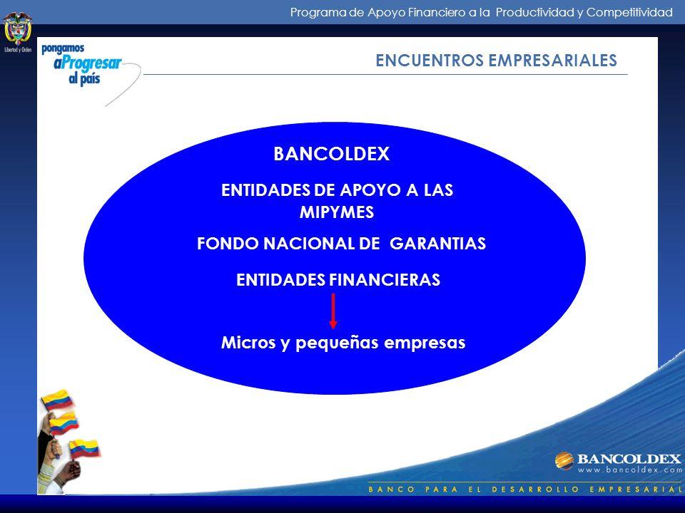 Programa de Apoyo Financiero a la Productividad y Competitividad Micros y pequeñas empresas FONDO NACIONAL DE GARANTIAS ENTIDADES DE APOYO A LAS MIPYMES ENTIDADES FINANCIERAS BANCOLDEX ENCUENTROS EMPRESARIALES