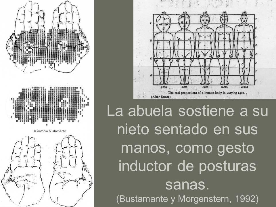 … una columna vertebrada …que se menea La pieza más delicada del sistema usuario- objeto es …