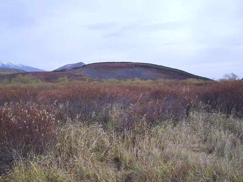 Ante nuestra asombrada vista se desplegaban amplios valles glaciares que se extendían a lo largo de muchos kilómetros, alfombrados por una espesa y multicolor vegetación en la que dominaba los tonos verdes, rojos y amarillos.