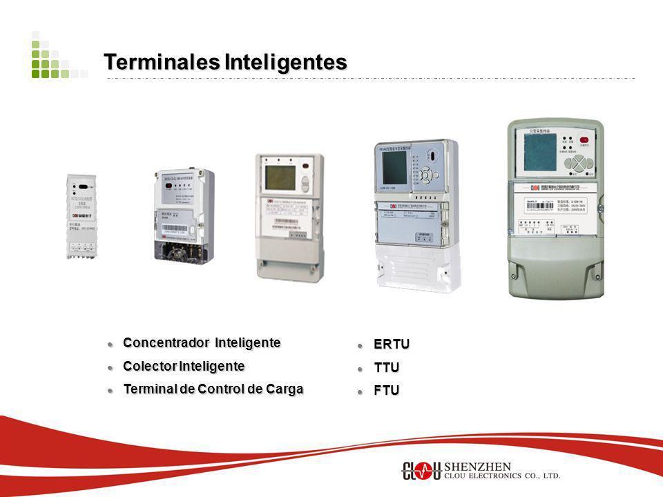 Concentrador Inteligente Concentrador Inteligente Colector Inteligente Colector Inteligente Terminal de Control de Carga Terminal de Control de Carga ERTU ERTU TTU TTU FTU FTU Terminales Inteligentes