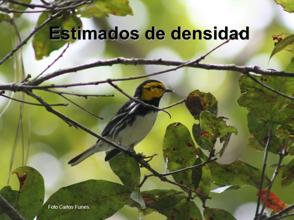 Parámetros para modelar densidad Condiciones Aves por hectáreaN Todos sitios con presencia de D.