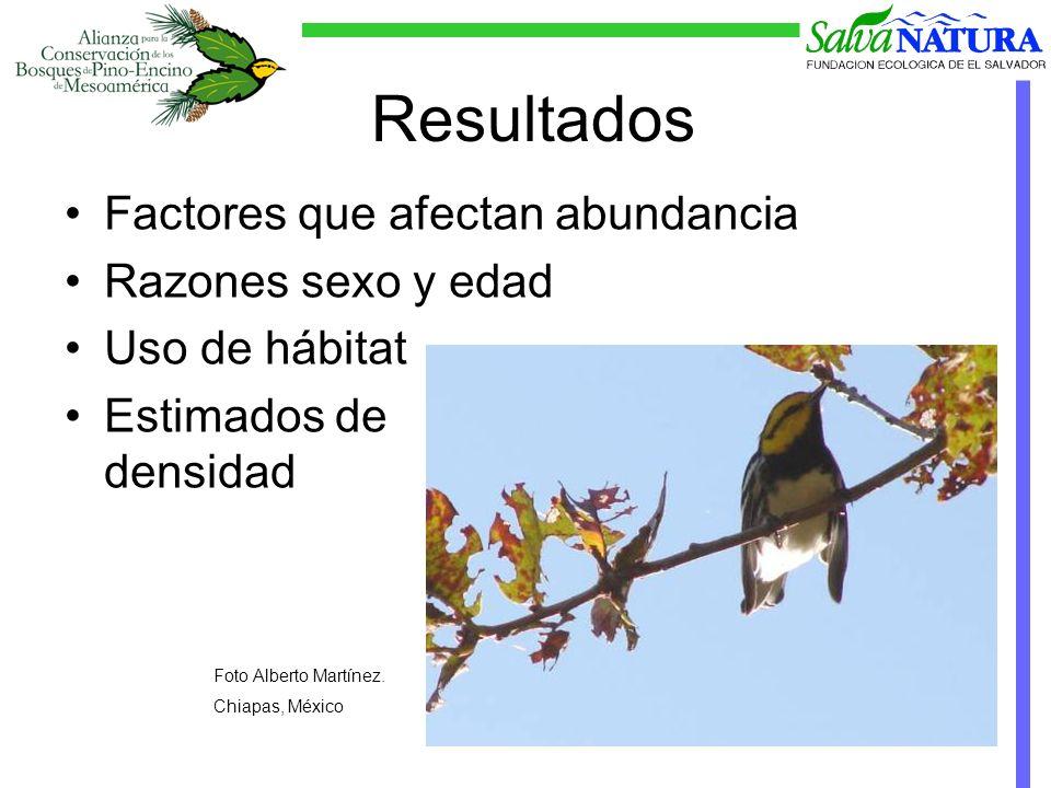 Factores afectando abundancia Foto Carlos Funes. Honduras.