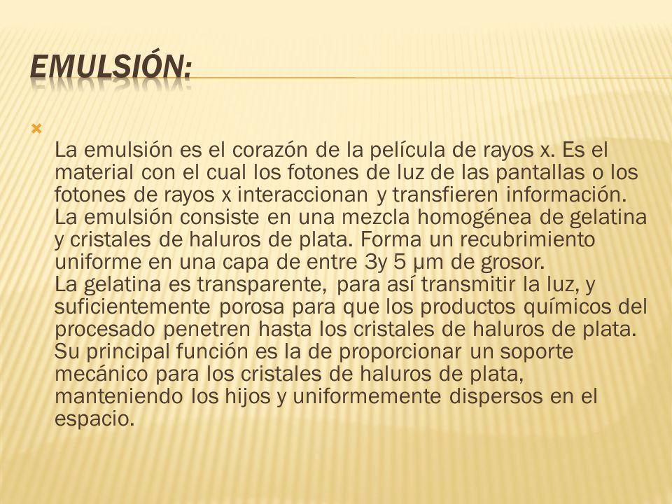 El cristal de haluro de plata es el ingrediente activo de la emulsión fotográfica.