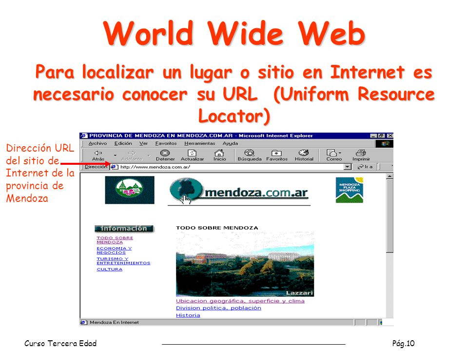 Curso Tercera Edad Pág.11 World Wide Web Navegadores Funcionalidades provistas por los navegadores: De navegación: volver a la página visitada anteriormente, pasar a la página siguiente luego de haber retrocedido, cancelar la transferencia de información.