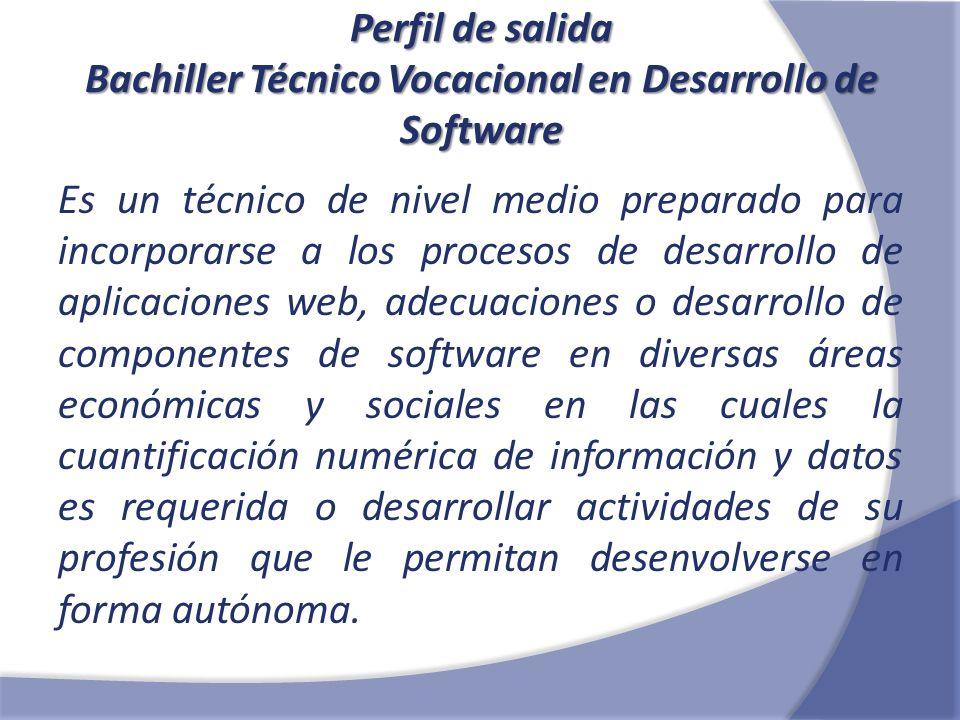 Mapa Funcional Bachiller Técnico Vocacional en Desarrollo de Software