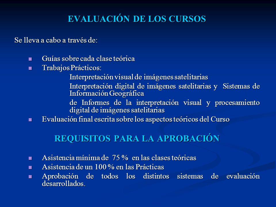 PROGRAMA DE LOS CURSOS MÓDULO I - FUNDAMENTOS FÍSICOS DE LA TELEDETECCIÓN MÓDULO II- SISTEMAS SENSORES MÓDULO III - INTERPRETACIÓN VISUAL MODULO IV - PROCESAMIENTO DIGITAL DE IMÁGENES