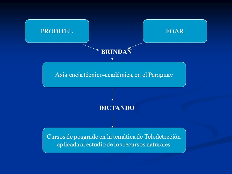 II, III y IV Curso de Entrenamiento en Técnicas de Sensores Remotos Aplicados a la Evaluación de Recursos Forestales y Agricultura, Universidad Nacional de Asunción, Paraguay, años 1994, 1996 y 1998 Evaluación de los Recursos Naturales del Paraguay mediante técnicas de Sensoriamento Remoto , Guyra de Asunción del Paraguay, en 2006