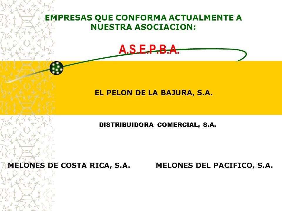 EMPRESAS QUE CONFORMA ACTUALMENTE A NUESTRA ASOCIACION: A.S.E.P.B.A.