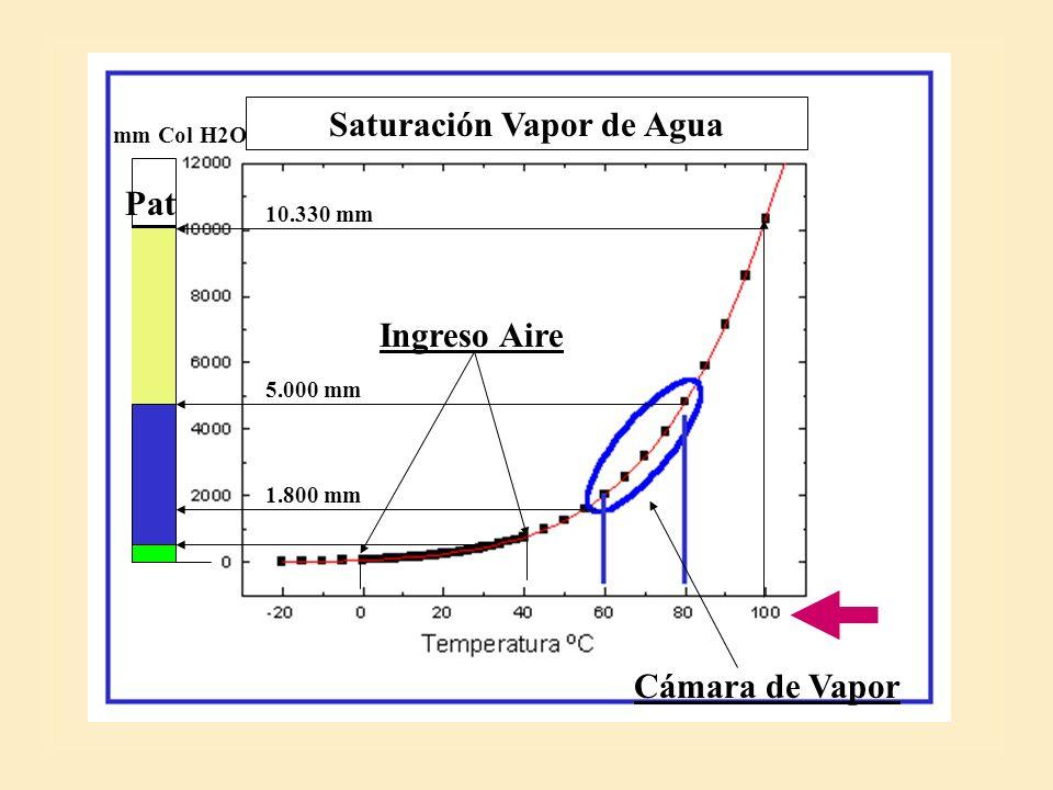 Vapor: 1,1 % Aire Seco 98.9 % Aire Seco 78,5 % Vapor: 21,5 % ENTRADA AIRE: Temperatura 11,5 ºC Humedad Relat.