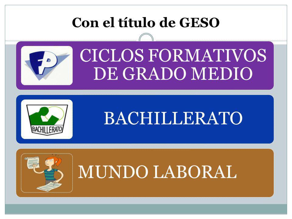 CICLOS FORMATIVOS DE GRADO MEDIO Son unos estudios que tienen como objetivo la preparación para una profesión y la posterior incorporación al mundo laboral y/o continuación de estudios.