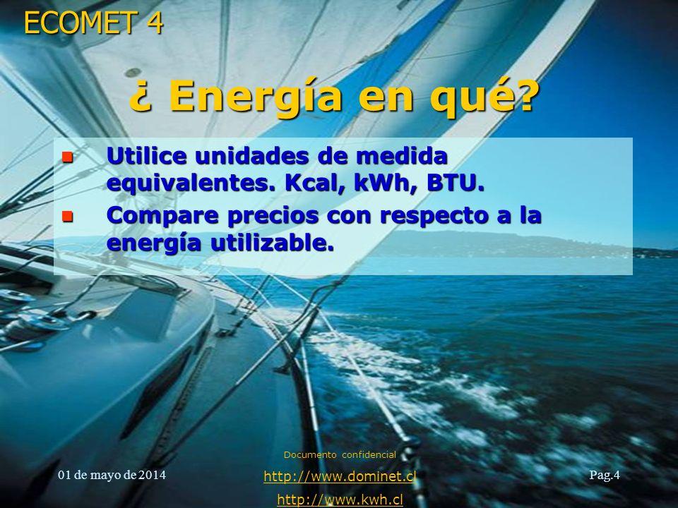 ECOMET 4 01 de mayo de 2014 Documento confidencial http://www.dominet.cl http://www.kwh.cl Pag.5 Electricidad (kWh) Petróleo(litros) GAS GRANEL (litros) ¿Qué tipo de Energía.