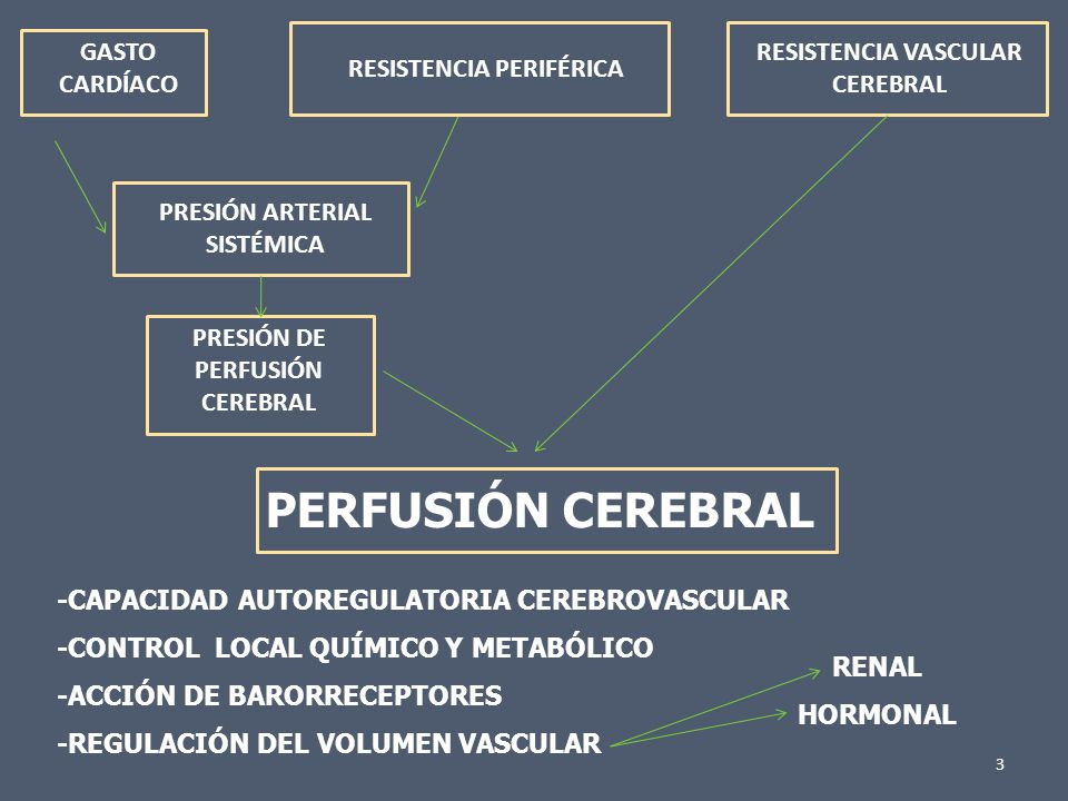 Síncope Vasovagal Hipotensión Ortostática Arritmias Cardíacas Enfermedad estructural Cardíaca Enfermedad Cerebrovascular 4
