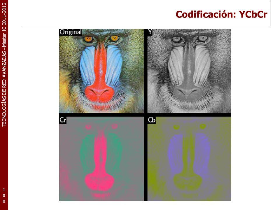 TECNOLOGÍAS DE RED AVANZADAS – Master IC 2011-2012 Codificación: Y Subsampling (I) 101101101