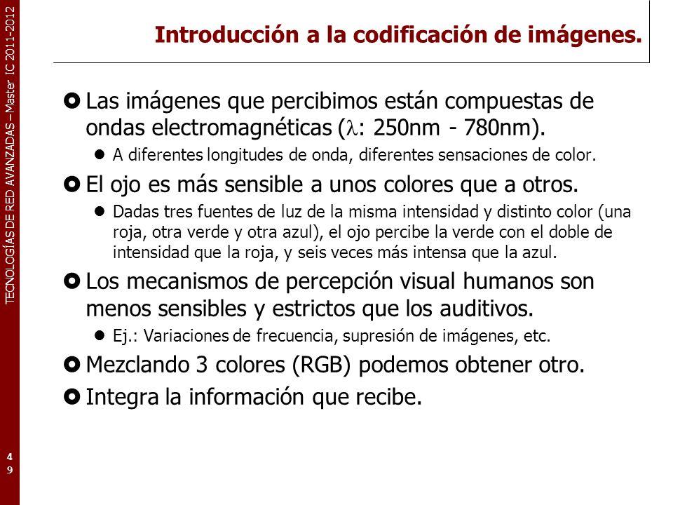TECNOLOGÍAS DE RED AVANZADAS – Master IC 2011-2012 Captura y digitalización de imagen I Las imágenes digitales están compuestas de píxels (picture element).
