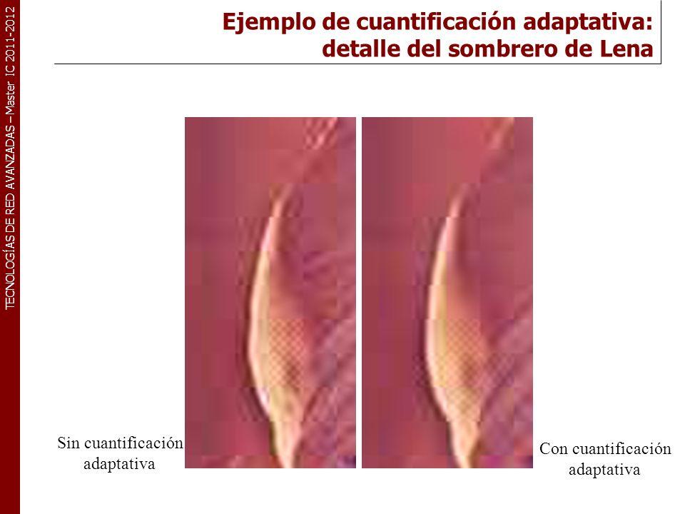 TECNOLOGÍAS DE RED AVANZADAS – Master IC 2011-2012 Resultados Detalle de la cara de Lena a 0.25 bpp JPEG escalado con cuantificación adaptativa JPEG escaladoJPEG estándar