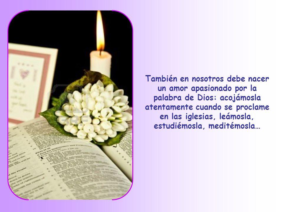 También en nosotros debe nacer un amor apasionado por la palabra de Dios: acojámosla atentamente cuando se proclame en las iglesias, leámosla, estudiémosla, meditémosla…