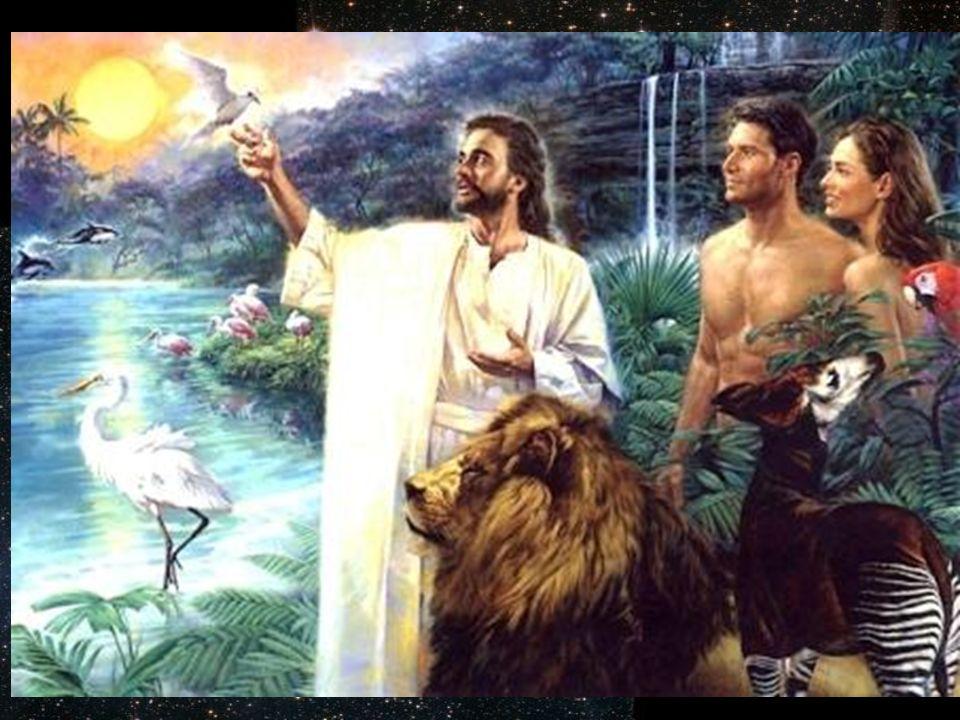 A dios no lo vemos, aunque tendamos a imaginarlo como nosotros, el no tiene cuerpo es espíritu puro.