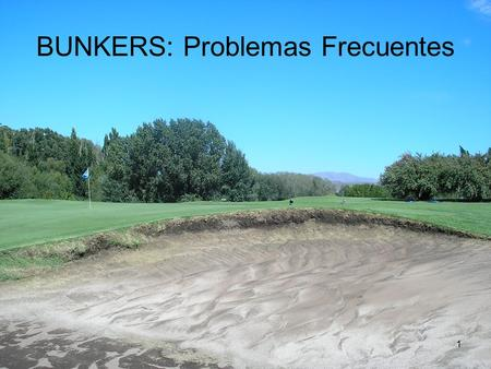 BUNKERS: Problemas Frecuentes