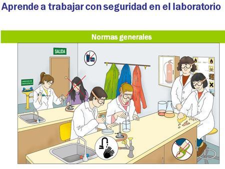 Resultado de imagen de SEGURIDAD laboratorio