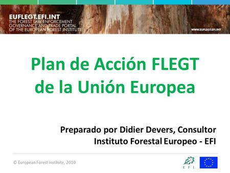 © European Forest Institute, 2010 Plan de Acción FLEGT de la Unión Europea Preparado por Didier Devers, Consultor Instituto Forestal Europeo - EFI.
