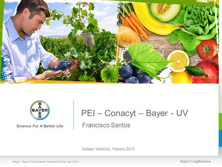 PEI – Conacyt – Bayer - UV Francisco Santos Xalapa, Veracruz, Febrero 2015 Bayer CropScience Company Profile April 2014Page 1.
