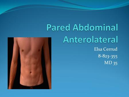 Pared Abdominal Anterolateral