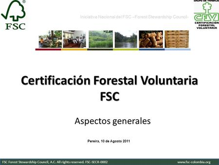 Certificación Forestal Voluntaria FSC Aspectos generales Iniciativa Nacional del FSC –Forest Stewardship Council- FSC Forest Stewardship Council, A.C.