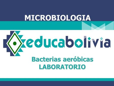 Bacterias aeróbicas LABORATORIO