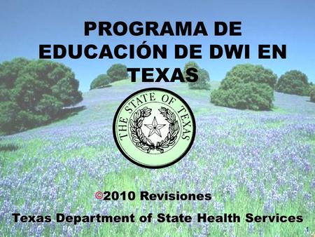  2010 Revisiones Texas Department of State Health Services 1 PROGRAMA DE EDUCACIÓN DE DWI EN TEXAS.