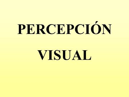 PERCEPCIÓN VISUAL.