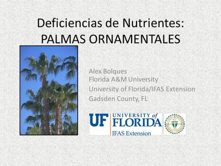 Deficiencias de Nutrientes: PALMAS ORNAMENTALES Alex Bolques Florida A&M University University of Florida/IFAS Extension Gadsden County, FL.