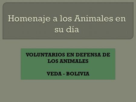 VOLUNTARIOS EN DEFENSA DE LOS ANIMALES VEDA - BOLIVIA.