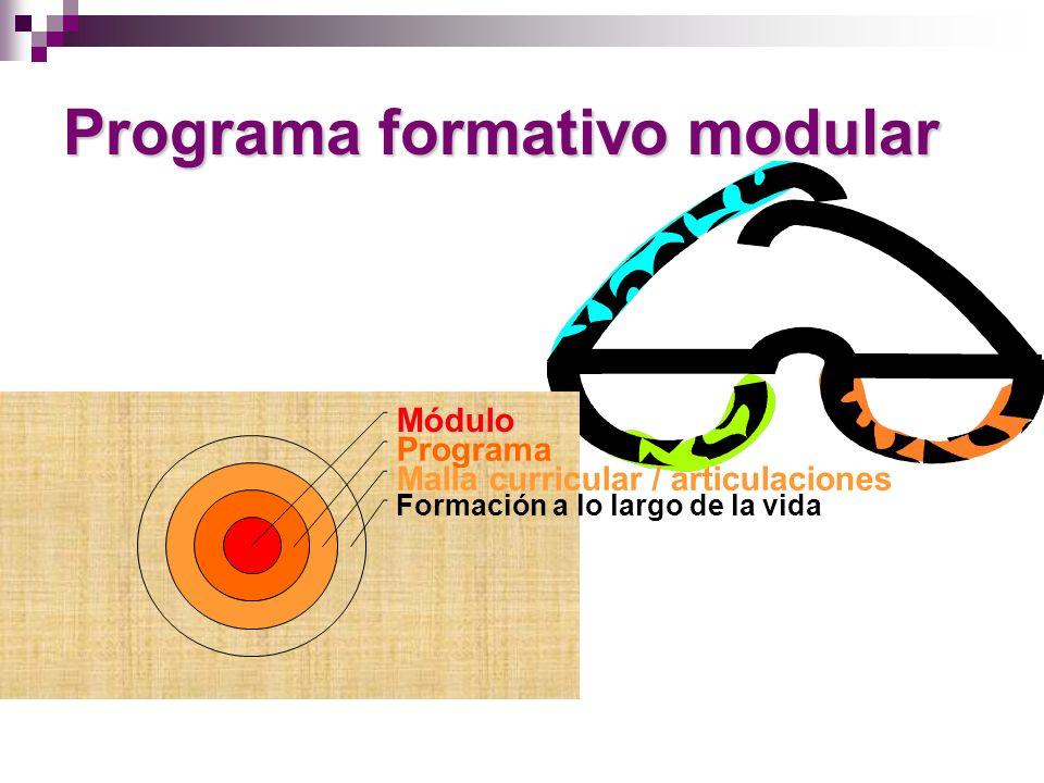 Estructura Modular Desarrollo de competencias: facilita la alternancia entre estudios y trabajo Pertinencia: permite itinerarios formativos adecuados y diversos