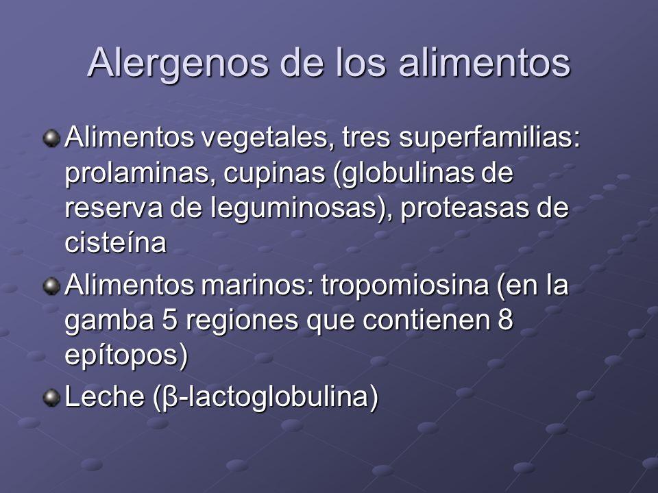 Alergenos de los alimentos Alimentos vegetales, tres superfamilias: prolaminas, cupinas (globulinas de reserva de leguminosas), proteasas de cisteína Alimentos marinos: tropomiosina (en la gamba 5 regiones que contienen 8 epítopos) Leche (β-lactoglobulina)
