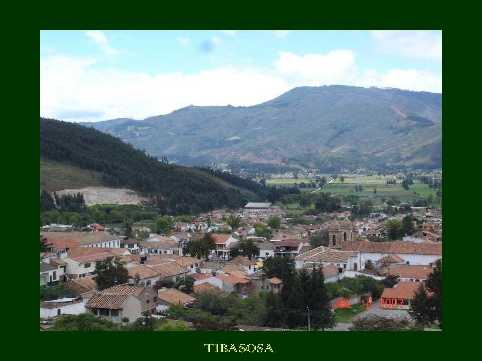 TIBASOSA