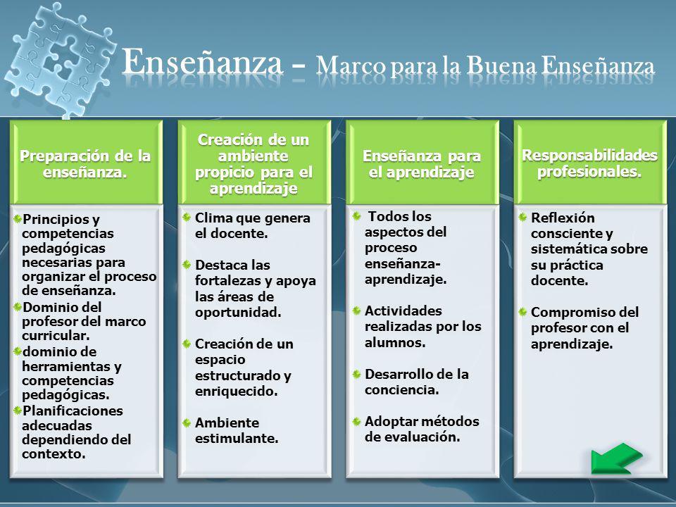 Evaluación de los Aprendizajes Evaluación del Docente Actualización profesional.