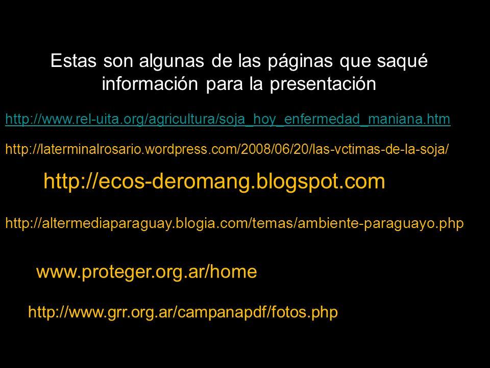 http://laterminalrosario.wordpress.com/2008/06/20/las-vctimas-de-la-soja/ http://ecos-deromang.blogspot.com / http://altermediaparaguay.blogia.com/temas/ambiente-paraguayo.php http:// www.proteger.org.ar/home http://www.grr.org.ar/campanapdf/fotos.php http://www.rel-uita.org/agricultura/soja_hoy_enfermedad_maniana.htm Estas son algunas de las páginas que saqué información para la presentación