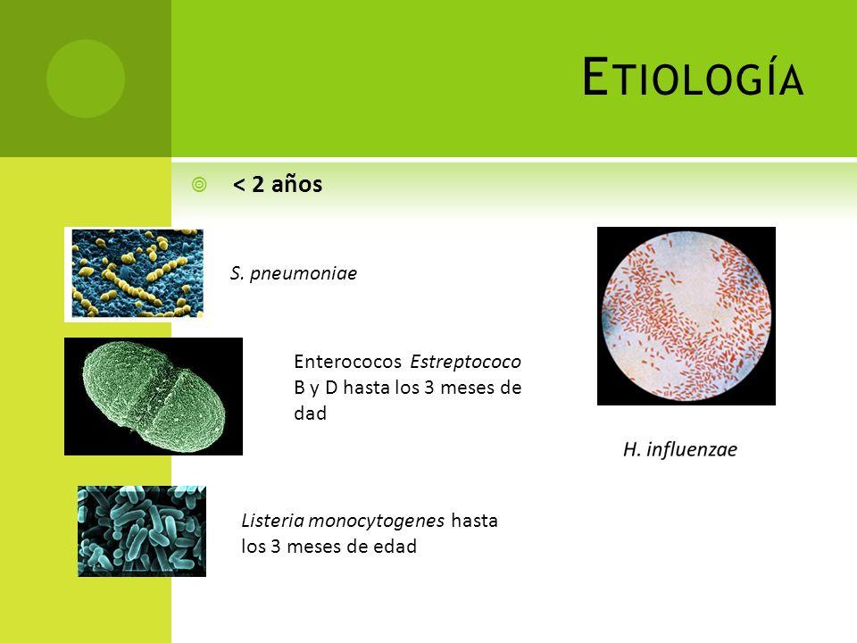 E TIOLOGÍA 2-12 años N. meningitidis S. pneumoniae