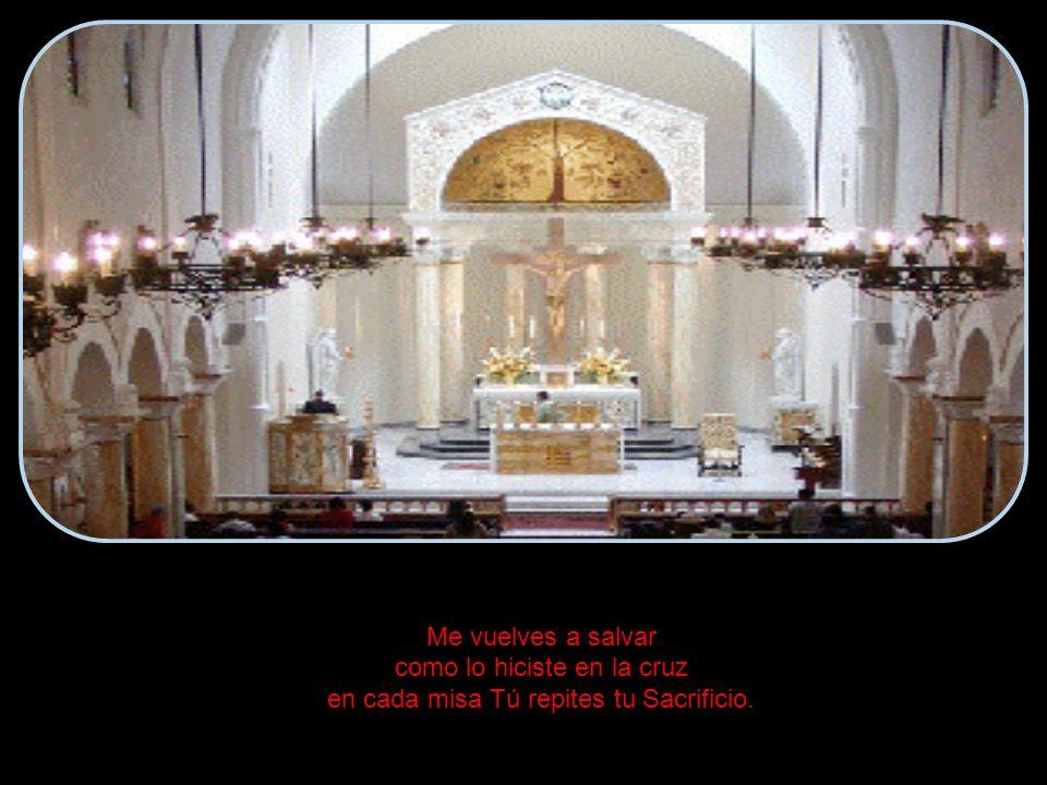 Me vuelves a salvar como lo hiciste en la cruz en cada misa Tú repites tu Sacrificio.
