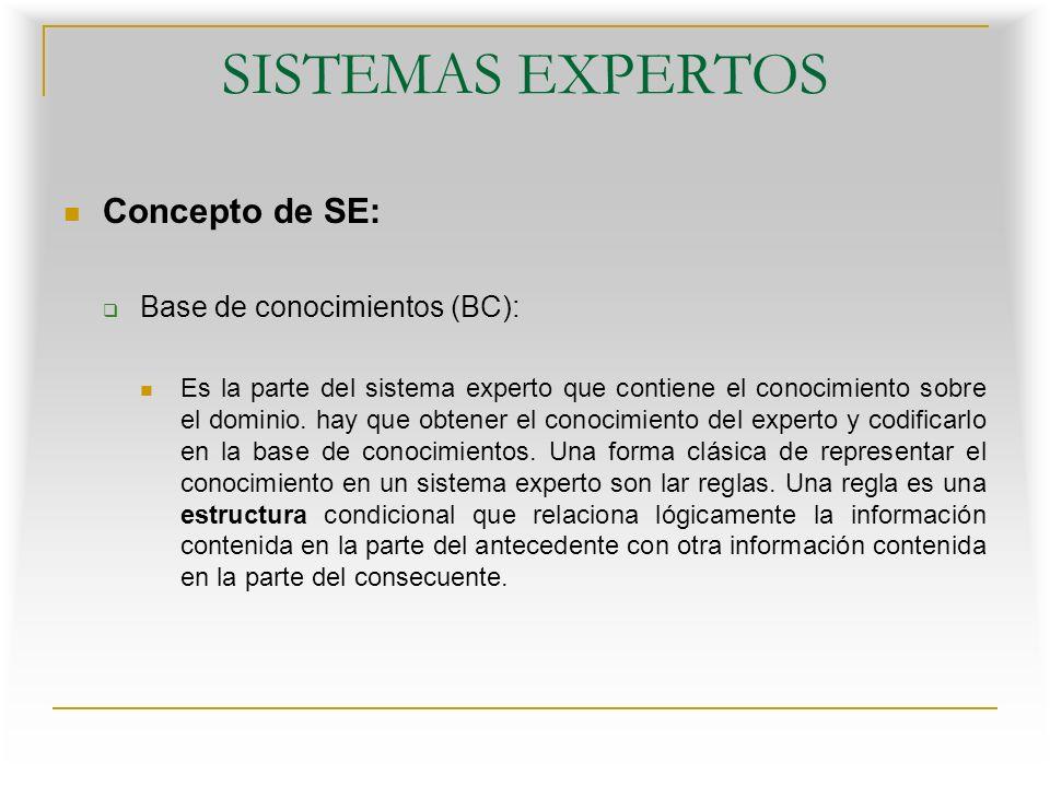 SISTEMAS EXPERTOS Concepto de SE: Base de Datos o Base de Hechos : Contiene los hechos sobre un problema que se han descubierto durante una consulta.