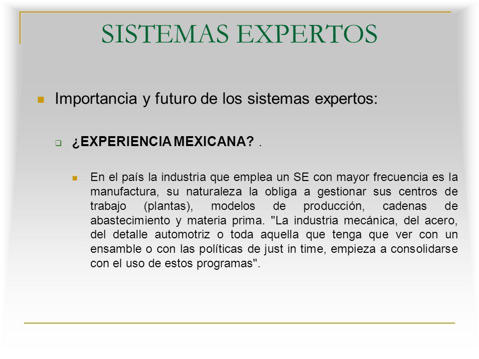 SISTEMAS EXPERTOS Importancia y futuro de los sistemas expertos: ¿EXPERIENCIA MEXICANA?.