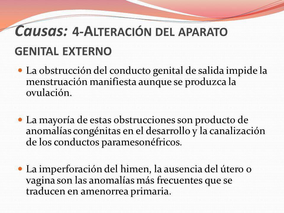 Causas : 4-A LTERACIÓN DEL APARATO GENITAL EXTERNO El himen puede ser reparado quirúrgicamente y se restablece la menstruación y la fertilidad, sin embargo lesiones más serias como un tabique vaginal transverso son más difíciles de reparar y con frecuencia no se restablece la menstruación ni la fertilidad.
