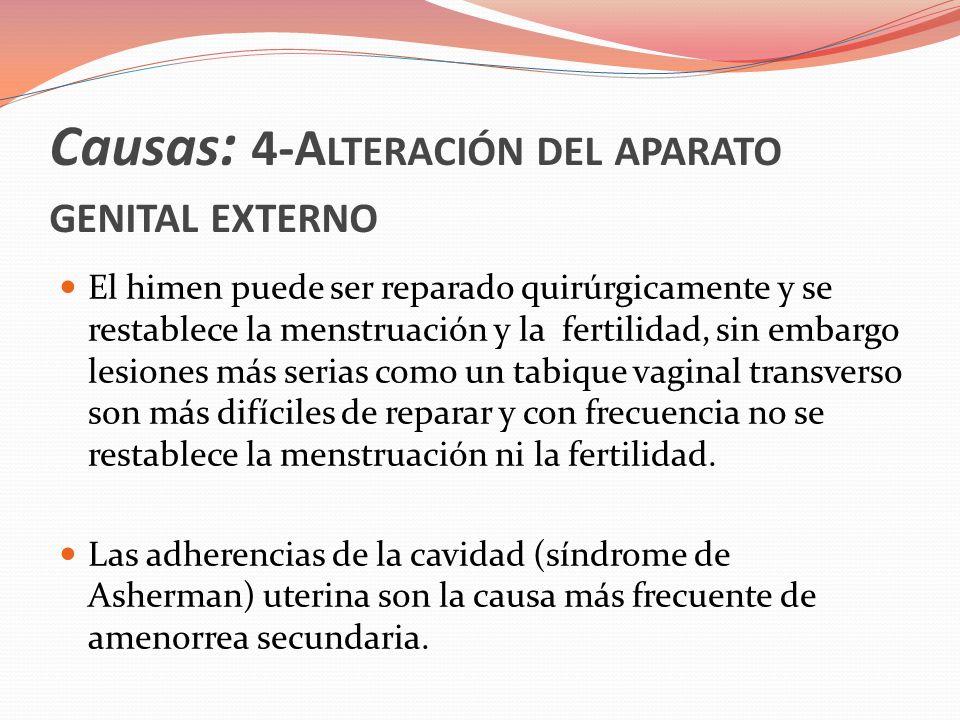 Causas: 4-A LTERACIÓN DEL APARATO GENITAL EXTERNO Las mujeres que se someten a legrado, especialmente en caso de infección, tienen riesgo de desarrollar cicatrización patológica del endometrio.