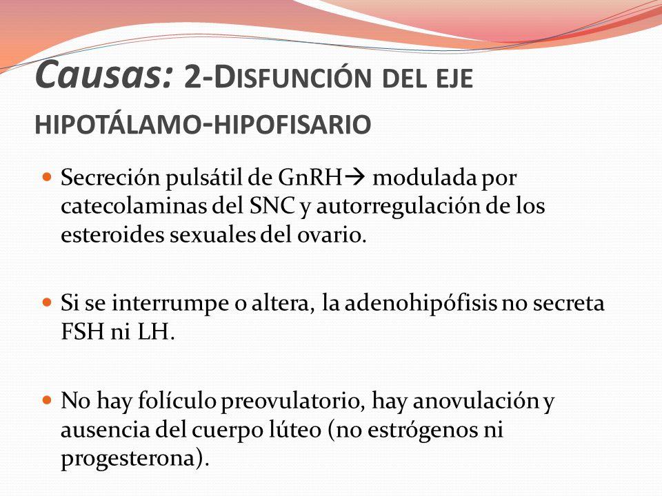 Causas: 2-D ISFUNCIÓN DEL EJE HIPOTÁLAMO - HIPOFISARIO No estimulación del endometrio no menstruación.