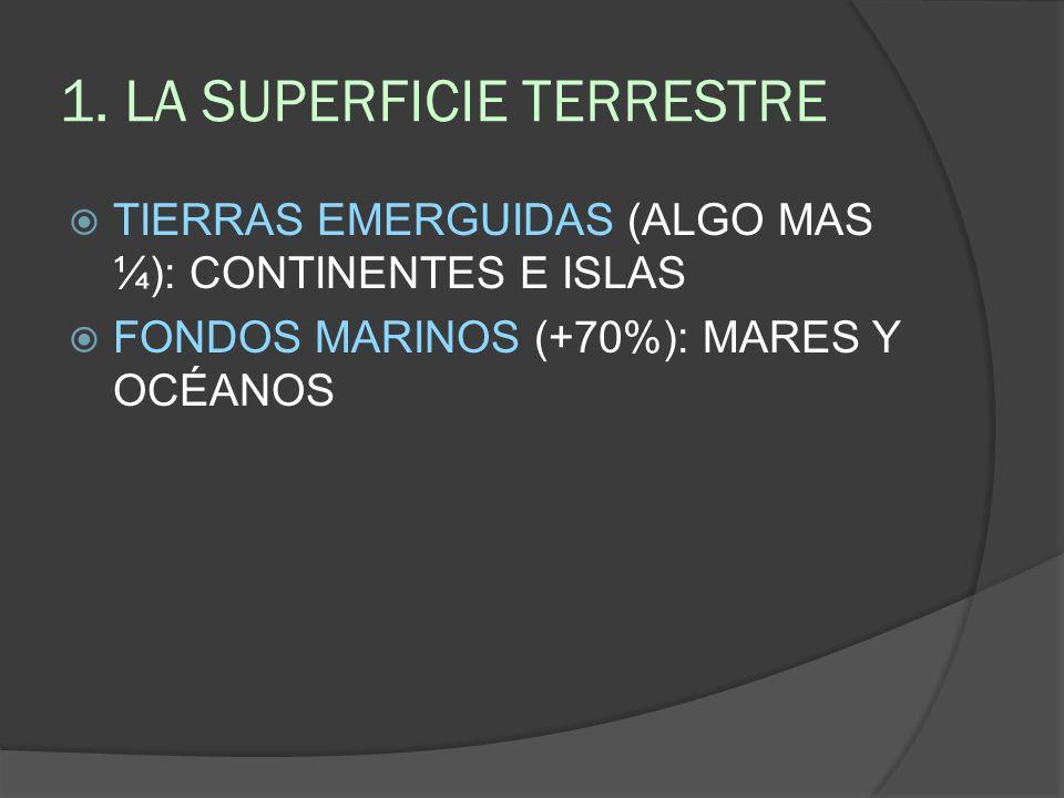 FONDOS MARINOS 5 GRANDES OCÉANOS: ATLÁNTICO PACÍFICO ÍNDICO GRACIAL ÁRTTICO Y GLACIAR ANTARTICO MARES IMPORTANTES: MEDITERRÁNEO CARIBE ARÁBIGO MAR DE TASMANIA MAR CARIBE MAR ROJO TIRRENO